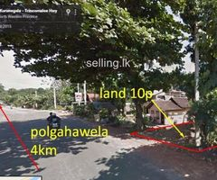 Land in Alawwa infront A6 road