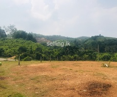 Land for Sale in Avissawella
