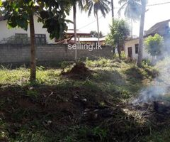 Land For sell in Ragama