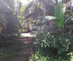 Land for sale with a house in Nittambuwa