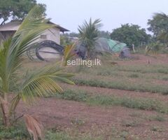 Land for Urgent Sale in Nilaveli (Near to the beach)