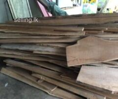 Teak Wood Lot For Sale