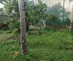 Flat land at Boralasgamuwa  for sale