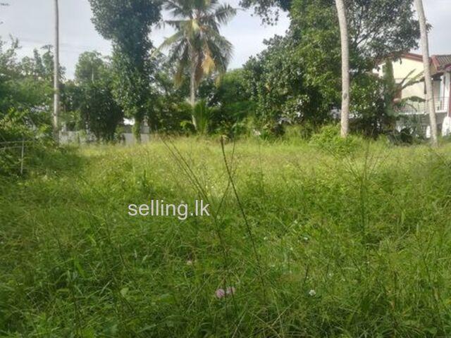 Land for rent in bokundara