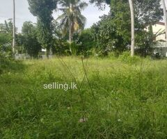 Land for rent in bokundara