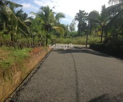 2 Acres  Rubber Land in Warakagoda for Sale