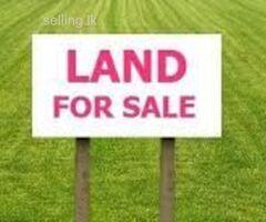 Southern pride land sale pinnaduwa