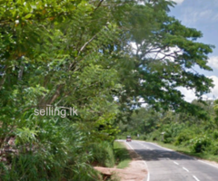 land for sale in Monaragala