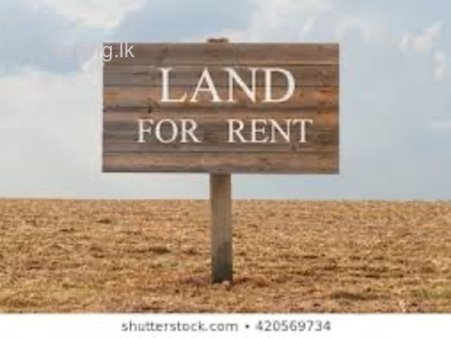 Kalutara land for rent