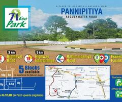 Land for sale in Pannipitiya