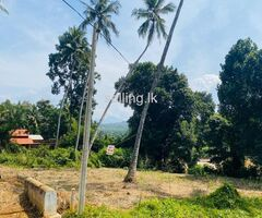 Land for Sale in Kavudupalalla Palapathwala matale