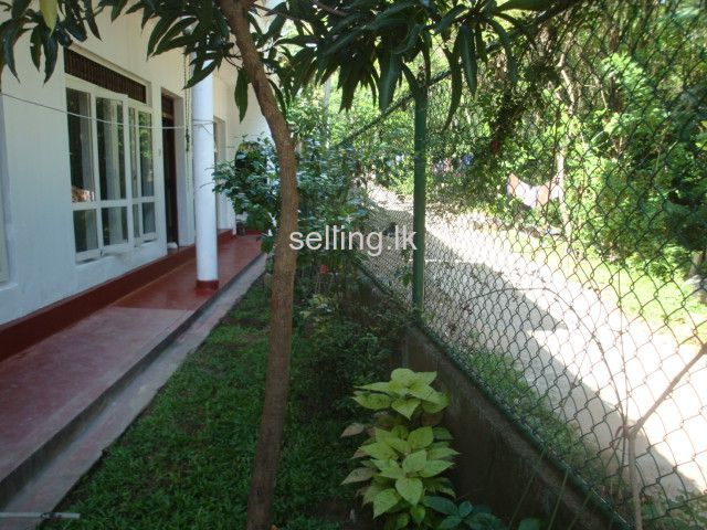 House for Rent in Kandy Haragama Road