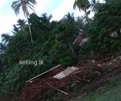 Land for rent in mathara kottegoda