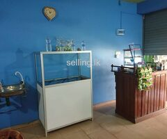 Hotel for Rent in Katuneriya