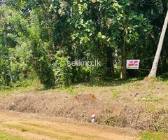 Land for sale in peaceful area Matale Kawudupalalle