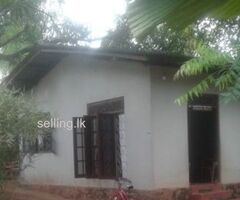 Land With House for sale in Homagama