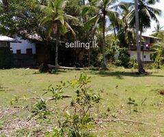 Urgent land sale at Hikkaduwa surrounded by paddy fields. Ideal place for residential or a Villa.