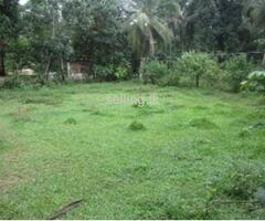 land for sale- GALGAMUWA