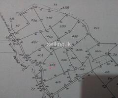 2 acres land sale in Baduraliya