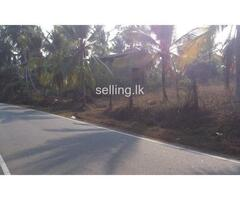 Dompe Land for Sale