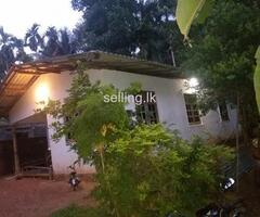 House sale in buthpitiya