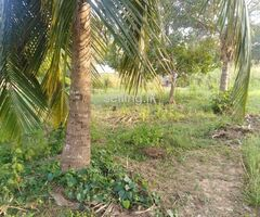 Land for sale in Wariyapola