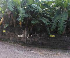 Land for sale in nugegoda pagoda main road