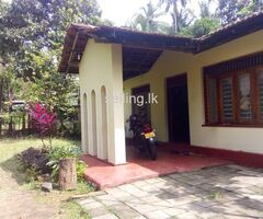 Land with house in Ipalawa Ibbagamuwa