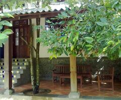 Beautiful house for sale-Thalawathugoda