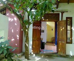 Beautiful house for sale-Thalawathugoda