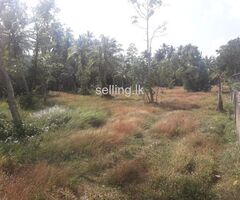 141 Perches Land for Sale near the Koggala Lake