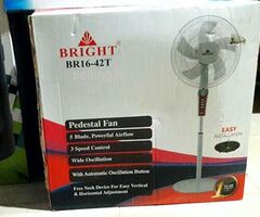 Bright Original Stand Fan 5 blade