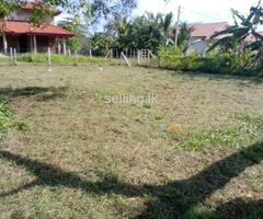 Land for sale chilaw