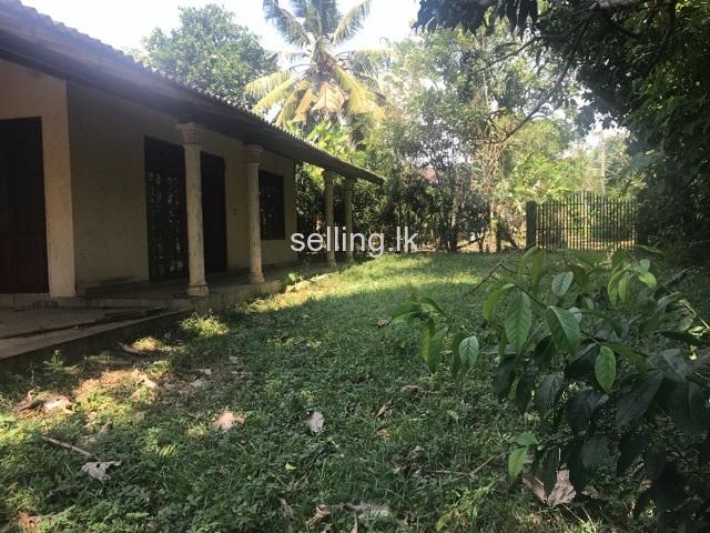 Valuable land for sale in pellawatta