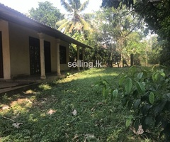 Valuable land for sale in pellawatta