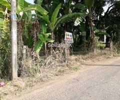 Valuable Land for Sale - Kurunegala
