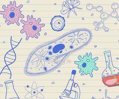 Biology classes