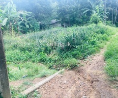 Land for sale in Dekatana Gampaha