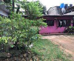 Land For Sale Kelaniya (With House)