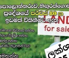 Land for sale in Polonnaruwa Hingurakgoda