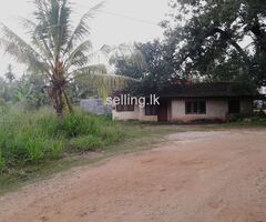 Land for Sale in kurunegala town
