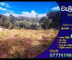 Land For sale in Walimada