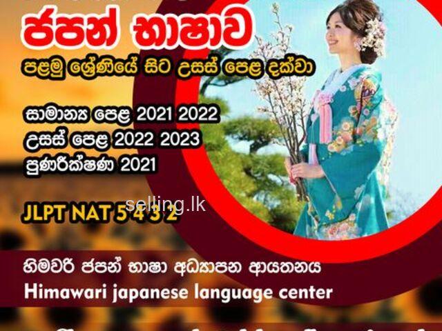 Japanese language classes online