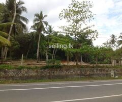Commercial land for rent or lease in Welipenna