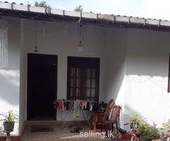 Rent House in Maharagama
