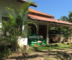 House for sell in Dehiattakandiya