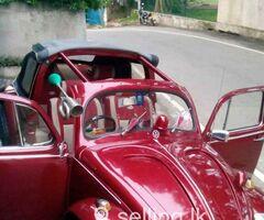 Volkswagon beetle for sale