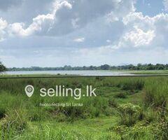 Land for Sale facing to Parakrama Samudraya
