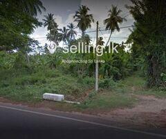 A land in Murungasyaya Middeniya