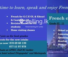 FRENCH CLASSES ONLINE & PHYSICAL